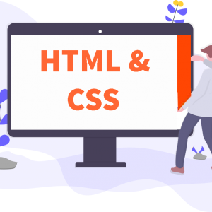 HTML & CSS Professional Training [2021]